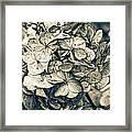 Dying Beauty Black And White Framed Print