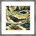 Eastern Diamondback Rattlesnake Framed Print