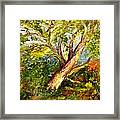 Edge Of The Pasture Framed Print