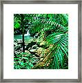 El Yunque Palm Trees And Waterfall Framed Print