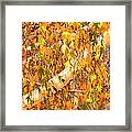 Elegant Autumn Branches Framed Print