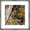 Emerald Falls Zion National Park Framed Print