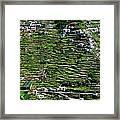 Emerald Madeira Terraces Framed Print