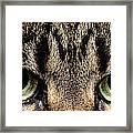 Emmy Eyes Framed Print