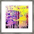 Enlightened Woods Are Here Again Ready To Surprise You  Framed Print