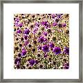 Eternity Flower Framed Print by Gerald Murray Photography