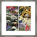 European Flower Market Collage Framed Print