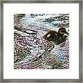 Even The Smallest Leave Ripples In Their Wake Framed Print