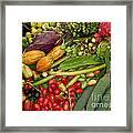 Exotic Fruits Framed Print