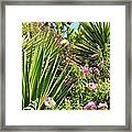 Exotic Hillside Garden Framed Print