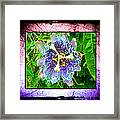 Exotic Strange Flower Framed Print