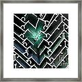 Extrusions Framed Print
