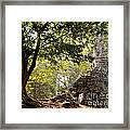 Face In The Forest 01 Framed Print