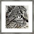 Facial Fur Framed Print
