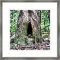 Fairy Blessings Framed Print