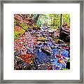 Fall 2014 Y129 Framed Print