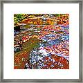 Fall 2014 Y208 Framed Print