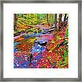 Fall 2014 Y219 Framed Print