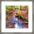 Fall 2014 Y239 Framed Print
