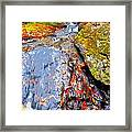 Fall 2014 Y246 Framed Print