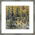 Fall At The River Framed Print