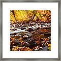 Fall Flow At Mcgee Creek Framed Print