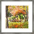 Fall Folage And Pond Framed Print