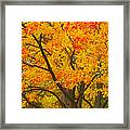 Fall In Pennsylvania Framed Print