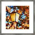 Fall In The Air Framed Print