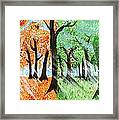 Fall Into Spring Framed Print