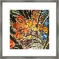 Fall Ivy On Pine Tree Framed Print
