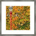 Fall Lamppost Framed Print