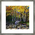 Fall Pond In Mammoth Framed Print