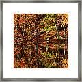 Fall Reflections Framed Print by Karol Livote