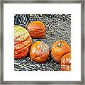 Fall Rejects Framed Print