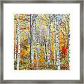 Fall Trees, Shinhodaka, Gifu, Japan Framed Print