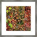 Fall Trio Collage Framed Print