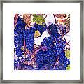 Fall Wine Grapes Framed Print