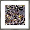 Fallen Autumn Leaves Among The Roots Framed Print