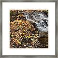 Fallen Leaves At A Waterfall Framed Print