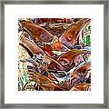Fan Palm Trunk In Andreas Canyon In Indian Canyons-ca Framed Print
