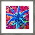 Fantasy Flower 1 Framed Print