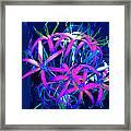 Fantasy Flowers 6 Framed Print