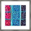 Farm Fresh Berries - Raspberries Blueberries Blackberies Framed Print