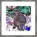 Female Pheasant Abstract Framed Print