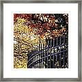 Fence At Woodlawn Cemetery Framed Print