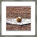 Field Of Dreams The Ball Framed Print