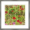 Field Of Poppies Digital Art Prints Framed Print