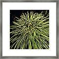 Fireworks At Night 8 Framed Print