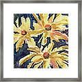 Fireworks In Flower Framed Print